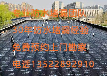 北京世纪洪雨必威体育备用网址官方公司